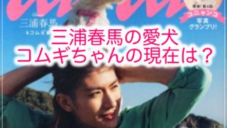 三浦春馬の愛犬コムギちゃん